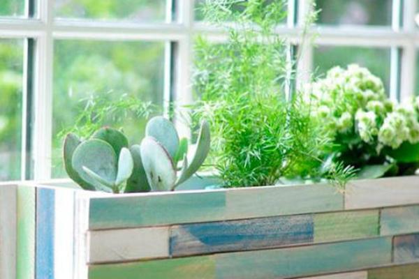 jardineria espacios pequeños