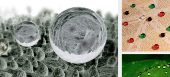 vidrios biomimicry