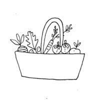 Juntas vamos a ir paso a paso para que puedas aprender y perfeccionar las técnicas de cultivo de plantas medicinales y comestibles aprendiendo a respetar el ciclo natural.
