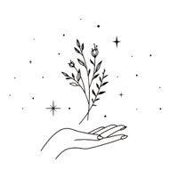 Vamos a explorar junto con las plantas medicinales y diversas herramientas en el proceso de sanación para estar alineada con el propósito de tu alma.